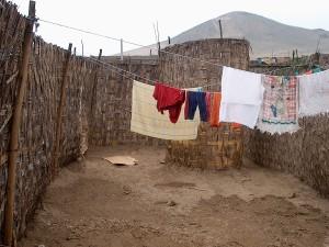 latrina-en-patio